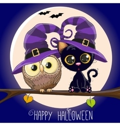 Cat and Owl vector image