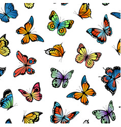 decorative butterflies pattern or vector image