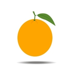 Orange Fruit Icon vector image