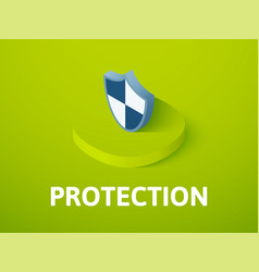 Protection isometric icon isolated on color vector