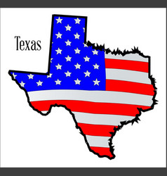texas map and flag vector image
