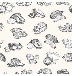 Nuts Set Hand Draw Sketch Background Pattern vector image vector image