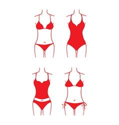 Ladies swimsuit vector image