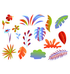 Set of tropical leaves and flowers vector