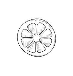 Slice of lemon sketch icon vector