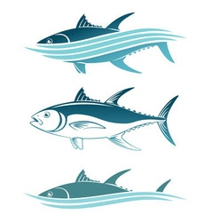 topic of tuna vector image