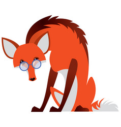 cartoon fox with glasses vector image vector image