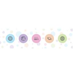 5 sphere icons vector