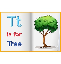A picture of tree in book vector