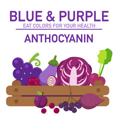 Eat colors for your health-blue amp purple vector
