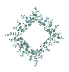 eucalyptus border frame on white background vector image