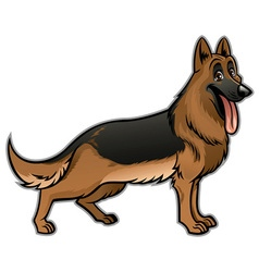 german shepherd dog vector image