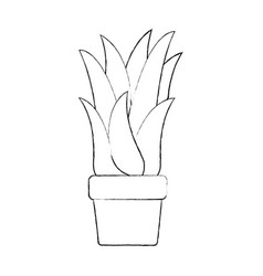 monochrome blurred silhouette of corn plant in vector image