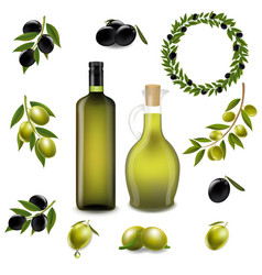 olive set with wreath isolated white background vector image