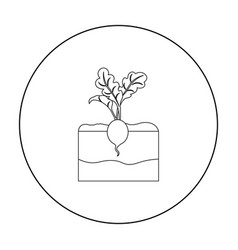 Radish icon outline single plant icon from the vector