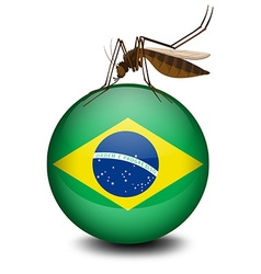 Brazil flag on ball and mosquito vector