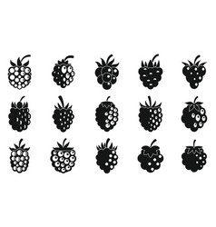Delicious blackberry icons set simple style vector