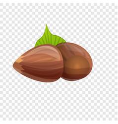 Hazelnut icon cartoon style vector