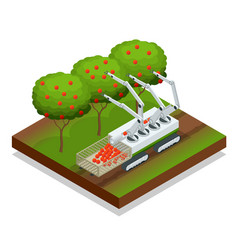 isometric automatic guided robots harvest fruit vector image
