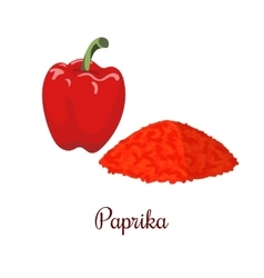 Paprika and powder realistic style isolated vector