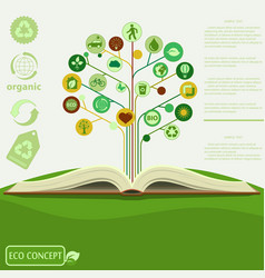 ecology info graphics modern design green tre vector image vector image