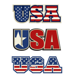 text symbol and icon of the usa vector image vector image
