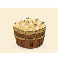 Yellow apples in a wooden basket vector image