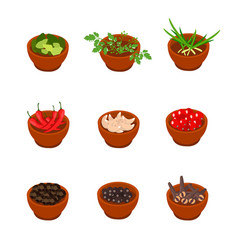 Isometric and cartoon style flavorful spices vector