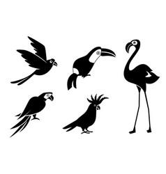 silhouettes birds cockatoos flamingos vector image
