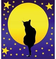The Cat the full moon and a starry sky vector image