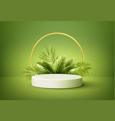 white product podium with green tropical palm vector image