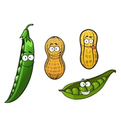 Cartoon opened green pea pods and peanuts in vector image