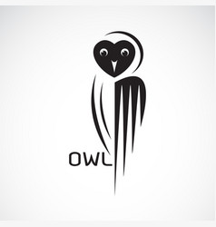 an owl design on white background bird wild vector image
