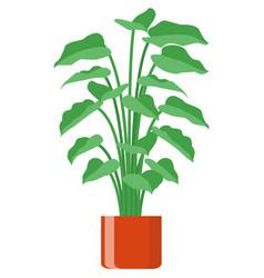 Flower in pot plant flowerpot isolated vector