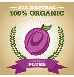 Organic Plum vector image