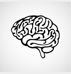 outline of human brain on white background vector image