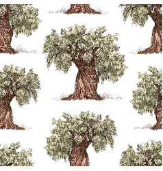 pattern of the drawn olive trees vector image