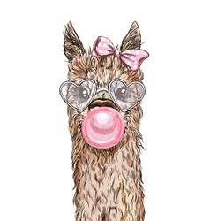 Portrait cute alpaca with pink bubble gum vector