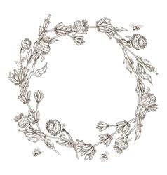 wreath wild herbal flowers hand drawn vector image