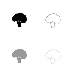 broccoli black and grey set icon vector image vector image