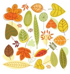 Set autumnal leaves vector