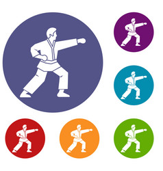 Aikido fighter icons set vector