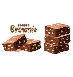 chocolate brownies vector image