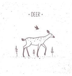 Deer doodle vector image