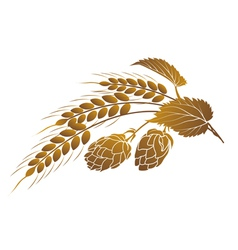 hops and wheat vector image