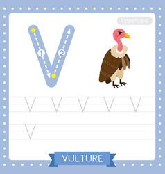 Letter v uppercase tracing practice worksheet of vector