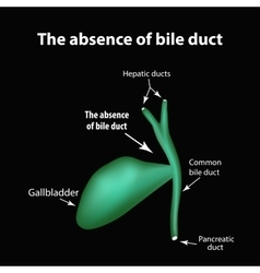 The absence of bile duct Pathology of the vector