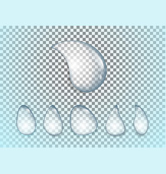 water drops realistic set isolated on transparent vector image