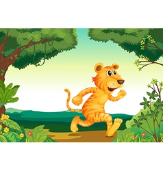 A tiger running along the forest vector image vector image