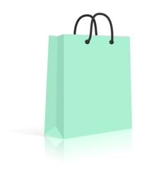 Blank Paper Shopping Bag With Rope Handles Mint vector image